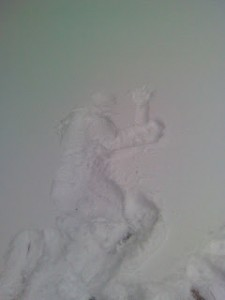 studenten_snow_fun_3