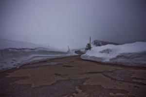 gefrorene Natur5