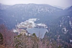 gefrorene Natur8