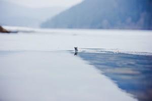 gefrorene See1
