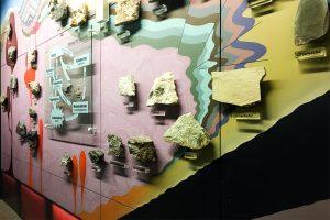 Designstudenten im Senckenbergmuseum