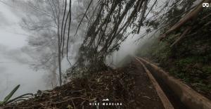 HikeMadeira - durch den Regenwald mit Designstudent Julian Marburger