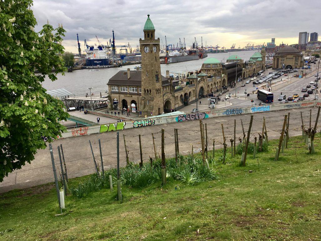 Designstudentinnen genießen Aussicht auf den Hamburger Hafen