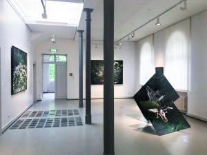 Fotoausstellung WALDLIFE 2