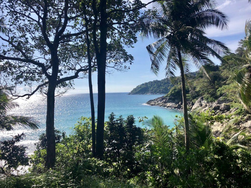 Designstudentin reist durch die Wälder bis zum Freedom Beach