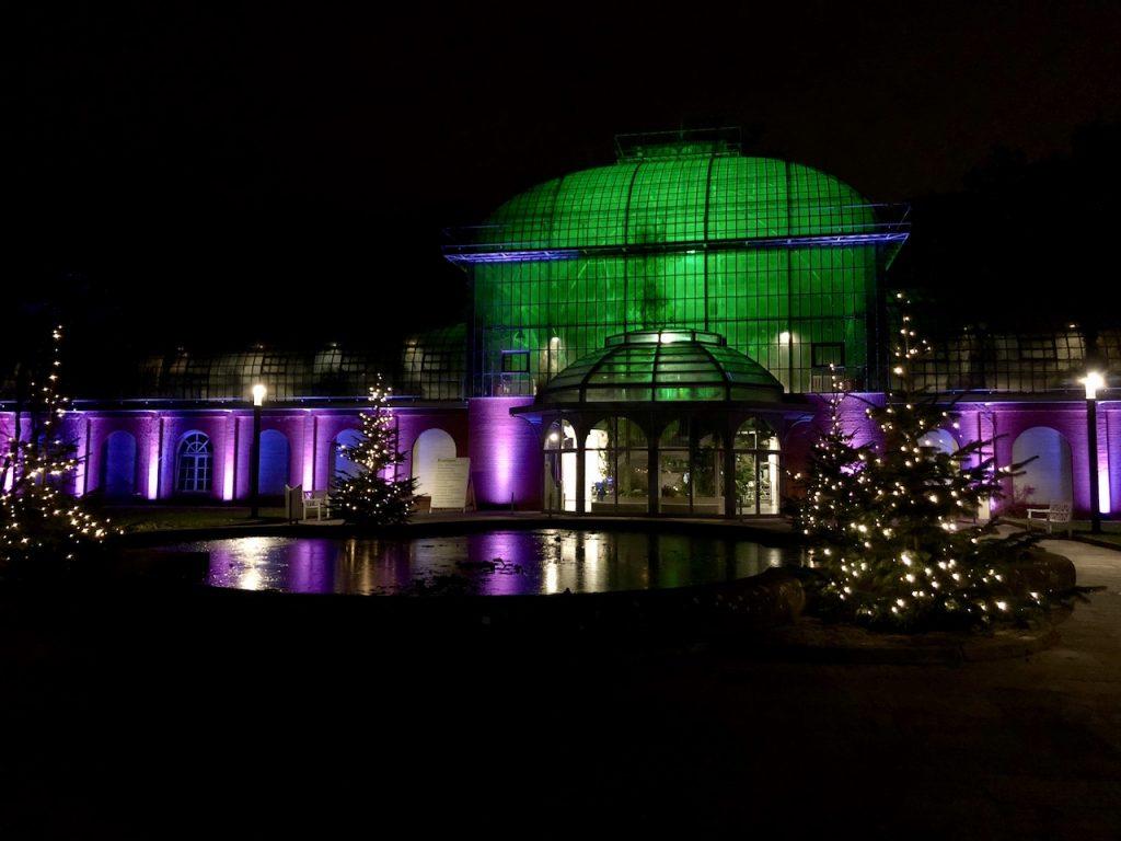 Designstudentin besucht Winterlichter im Palmengarten Frankfurt