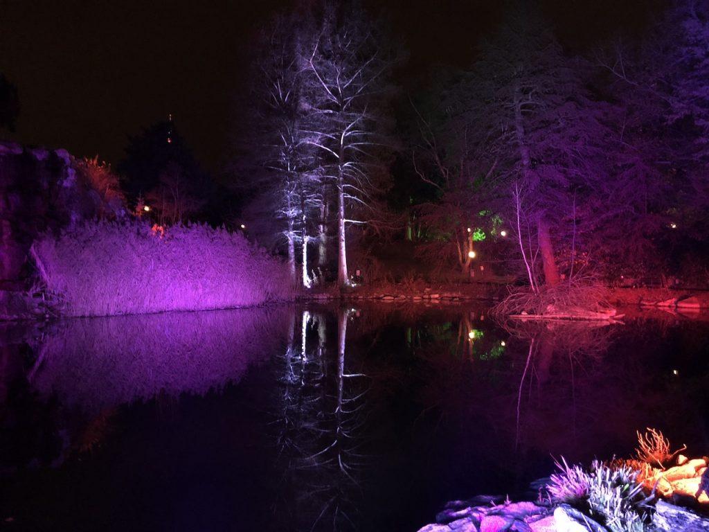 Winterwunderland im Palmengarten Frankfurt