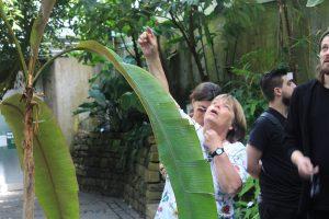 Frau Dr. Steinecke gab den Designstudenten eine spannende Führung zu essbaren Pflanzen im Palmengarten
