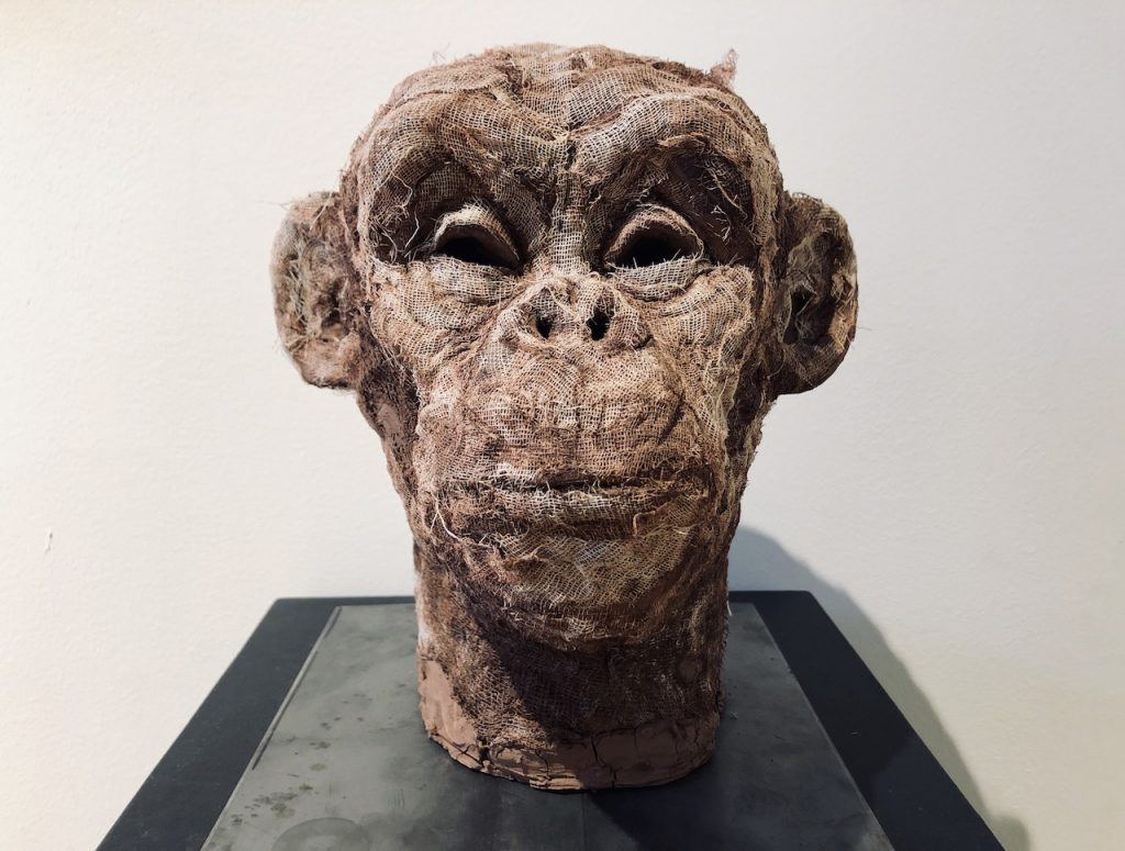 Affenkopfskulptur im Museum in Newcastle