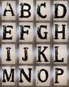 Alphabet_Blumen