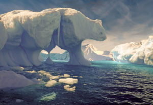 Eisbären Designen