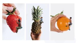 kletternte Früchte